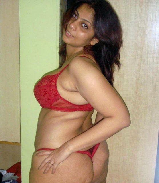 Hot Desi Aunties Pictures  South Indian Actresses Pics